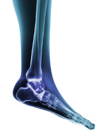 Foot specialist approach to orthopaedic disorders of the foot