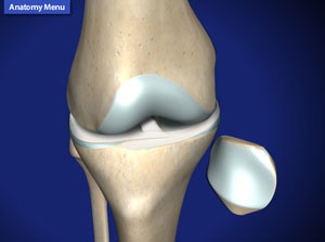 A knee specialist offers a wide range of diagnostic and therapeutic options